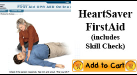 Online First Aid Class